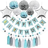 Blue Birthday Party Decorations: Happy Bday Banner, 6 Pom Pom Flowers,12 Tassels,2 Round Paper Garland, 2 Silver Star Balloons, Baby Blue Grey White DIY Set Party Supplies, Baby Shower