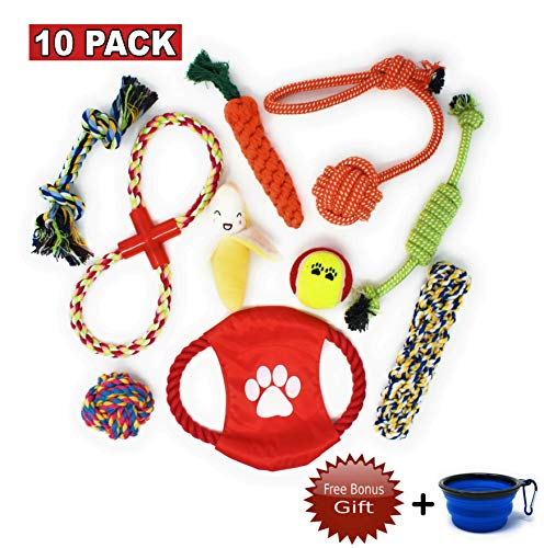 10 Dog Chew Toys with Carrying Bowl Gift – Puppy Dog Toys Value Pack for Small & Medium Dogs – 10 Pack Dog Toys for Chewing and Teething