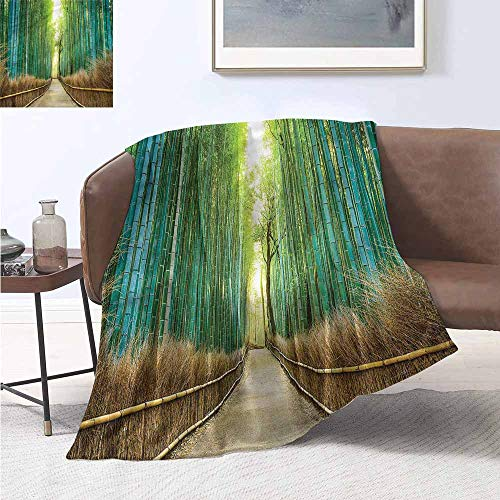 Digital Printing Blanket Bamboo Forest Nature Park in Japan Print Summer Quilt Comforter W70 xL93 Traveling,Hiking,Camping,Full Queen,TV,Cabin