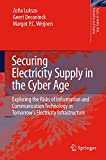 Securing Electricity Supply in the Cyber Age 9789048135936