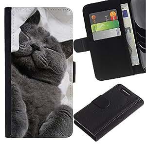Graphic Case / Wallet Funda Cuero - Russian Blue Korat Cat Black Feline - Sony Xperia Z1 Compact D5503