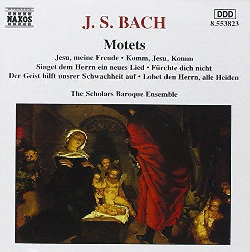 Scholars Baroque Ensemble (Motets)
