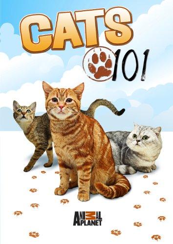 Cats 101 -