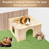 PAWCHIE Wooden Hut with Windows - Detachable and