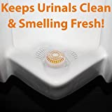 Long Lasting Urinal Screen and Deodorizer with Non-Para Block 12 Pack. Universal-Fit, Citrus-Scent Cake Releases Cleaning Agents To Remove Odor. Durable Mat Limits Janitorial Cleaning and Supply Needs
