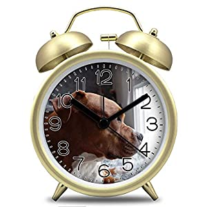 "GIRLSIGHT3 4"" Twin Bell Alarm Clock with Cute Animal Dial, Backlight, Battery Operated Loud Alarm Clock 124.American Pit Bull Terrier Puppy on Window Pane Close-up Photo(Gold) 22"