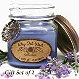 Lavender Jar Candles 2-PACK (Aromatherapy) -Perfect Gift for Her- Scented Candles with Relaxing, Natural Lavender Essential Oils -Fragrant, Long Lasting- Soy Wax Blend -Spa Quality (Periwinkle)