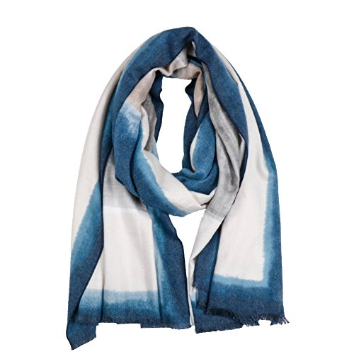 Women Pashmina Scarf Winter Wrap,RiscaWin Soft Oil Painting Scarf Fashion Long Cashmere Feel Shawl Warm Large Scarf(Ci - Glare No Sunglasses