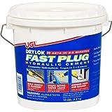 DRYLOK 00924 Fast Plug, 10-Pound