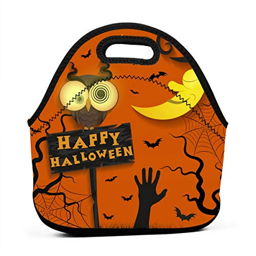 Lunch Bags for Women-Halloween Holiday Crazy Owl Girls Lunch Box Reusable Snack Bags Cute Toddler Lunch Bag Totes 3D Print Small Handbags -