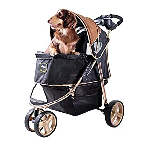 Monarch Premium Pet Jogger (Luxury Gold)