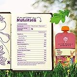 Pumpkin Tree Peter Rabbit Organics Beet, Carrot and