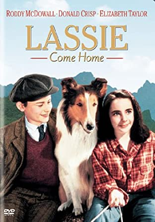Image result for lassie come home