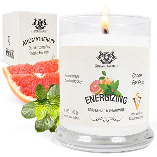 Grapefruit & Spearmint Aromatherapy Deodorizing Soy Candle for Pets, Candles Scented, Pet Odor...