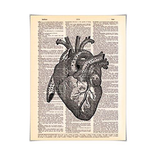Heart Anatomy - Printed on Vintage Dictionary Paper Anatomy Art Print
