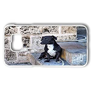 Samsung Galaxy S6 Case, Black Dog On Stone Stairs Rugged PC Hard Shell Case Cover for Samsung Galaxy S6 Transparent