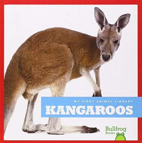 Used, Kangaroos (Bullfrog Books: My First Animal Library) for sale  Delivered anywhere in USA