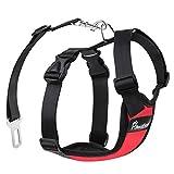Pawaboo Dog Safety Vest Harness, Pet Dog Adjustable Car Safety Mesh Harness Travel Strap Vest with Car Seat Belt Lead Clip, Medium Size, RED