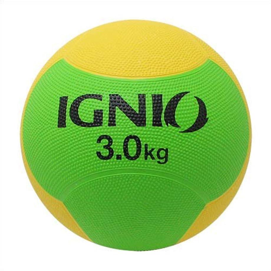 ピグマリオン意図的自然【 ボールで本格トレーニング 】 1kgから10kgまで10種類 メディシンボール トレーニング 筋トレ ウェイト 重り ボール 運動 筋肉 フィットネス