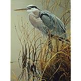 Cobble Hill Great Blue Heron, 500-Piece