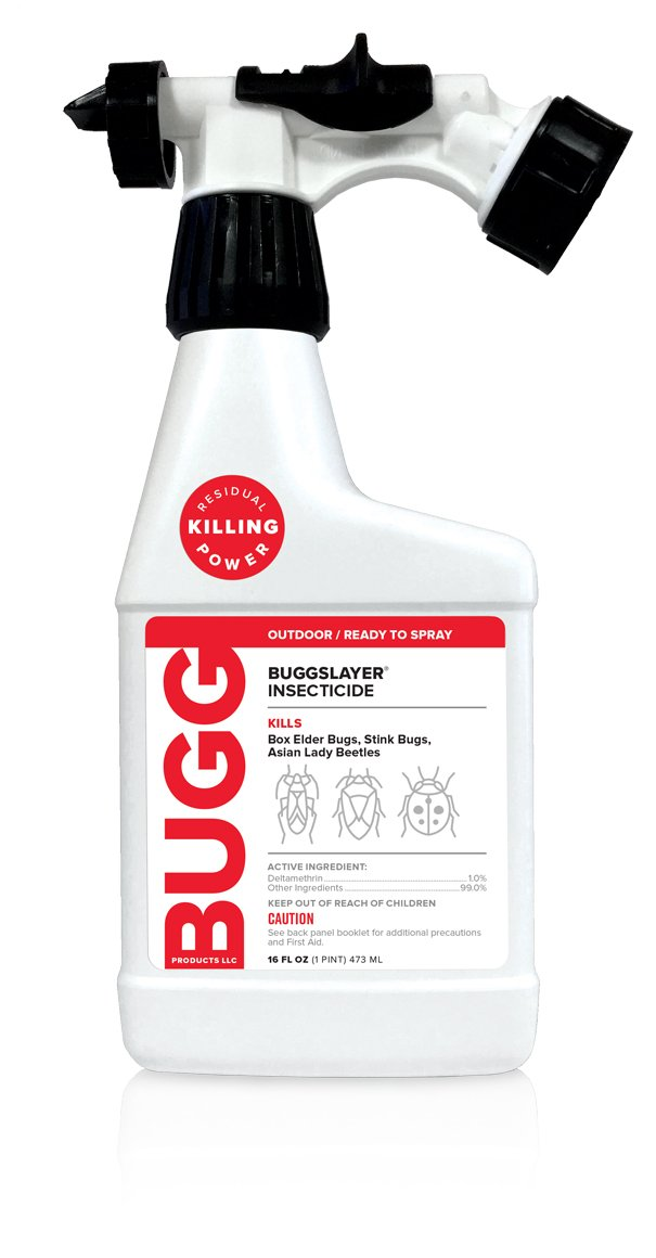 BUGGSLAYER Multipurpose Insect Killer - Easy Hose End Sprayer, Kills Box Elder Bugs, Stink Bugs, Asian Lady Beetles, Ants, Spiders and over 50 Other Insect Pests| Ready-To-Spray, Insecticide 16-oz (1)