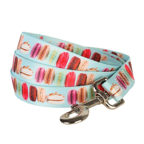 Blueberry Pet Durable The Ultimate Macaroon Cake with Spring Pastel Hues Dog Leash 5 ft x 5/8