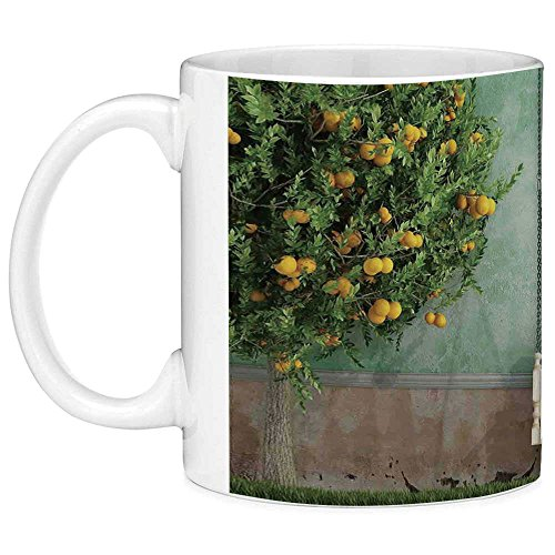 Lead Free Ceramic Coffee Mug Tea Cup White Country Home Decor 11 Ounces Funny Coffee Mug Vintage Wooden Swing in the Garden of an Old House with a Lemon Tree Summertime Yellow Green -