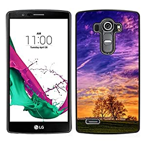 // PHONE CASE GIFT // Duro Estuche protector PC Cáscara Plástico Carcasa Funda Hard Protective Case for LG G4 / Colorido Valle /