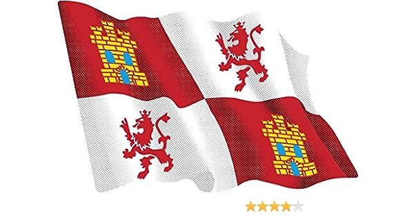 Artimagen Pegatina Bandera Ondeante Castilla León Extra 130x95 mm.: Amazon.es: Coche y moto