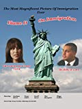 Blame it On Immigration