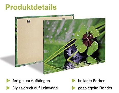 Leinwand-Bilder Wandbild Canvas Kunstdruck 125x50 Lotos Pflanzen
