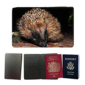 Super Stella PU Leather Travel Passport Wallet Case Cover // M00146868 Hedgehog Young Animal Prickly // Universal passport leather cover