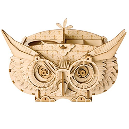 ROBOTIME Wood Craft Kits Owl Box 3D Brain Teaser Puzzle for Kids Great Pen Container for Adults (Creative Ideas For Science Fair Display Boards)