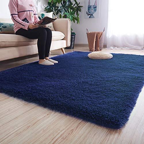 Noahas Ultra Soft Shaggy Area Rugs Fluffy Living Room Carpet Bedroom Fur Rug Anti-Skid Child Playing Mat Home Decor, 5.3 x 7.5 Feets Indigo (Carpet Indigo)