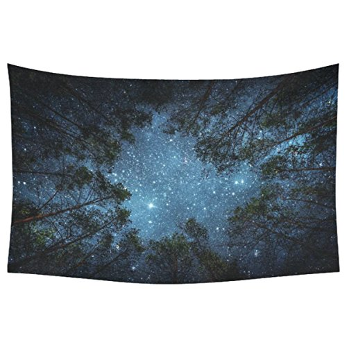 InterestPrint Beautiful Night Sky Wall Art Home Decor, the Milky Way and the Trees Tapestry Wall Hanging Art Sets 40 X 60 Inches (One Side Printing)