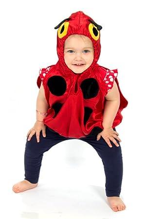 Lucy Locket - Disfraz de Mariquita para bebé (0-2 años): Amazon.es ...