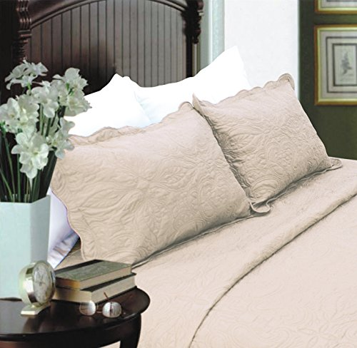 Paisley Standard Sham (All For You 2-Piece Embroidered Quilted Pillow shams-standard size)