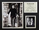 Frankenstein 11
