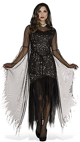 Rubie's Costume Co Women's Evening Enchantress Costume, Black, Standard