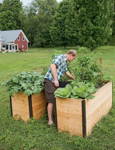 elevated raised garden beds. Amazon.com : Cedar Keyhole Elevated Raised Bed Garden With Integrated Composter \u0026 Outdoor Beds H