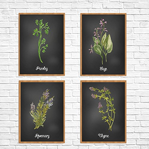 Set of 4 Chalkboard look Watercolor Herb Prints Parsley Sage Rosemary and Thyme Unframed Kitchen (Thyme Framed)