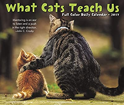 2017 What Cats Teach Us Box Calendar