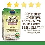 Garden of Life Vegetarian Digestive Supplement
