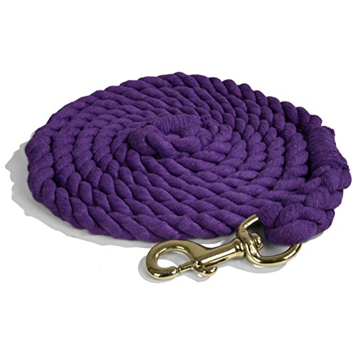 Intrepid International Lead Rope Cotton with Brass Snap Heavy Duty 10-Feet Lead Rope, Purple