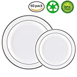 60PCS Heavyweight White with Silver Rim Wedding Party Plastic Plates,China Plastic Plates,30-10.25inch Dinner Plates and 30-7.5inch Salad Plates -WDF (White/Silver Rim)