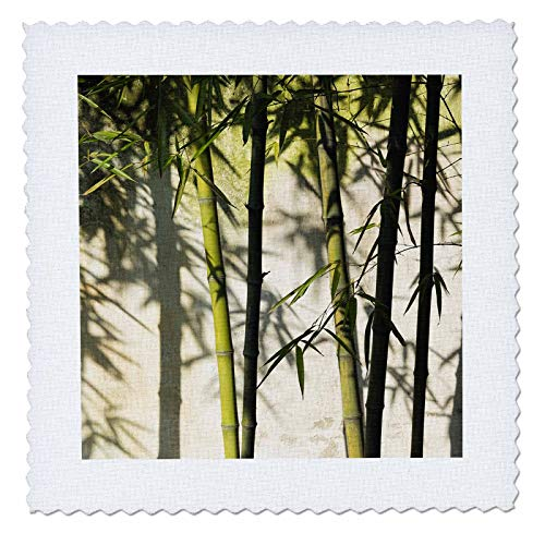 3dRose Danita Delimont - Patterns - Bamboo casting shadow on the wall in garden, Suzhou, Jiangsu, China - 18x18 inch quilt square - Suzhou Jiangsu China
