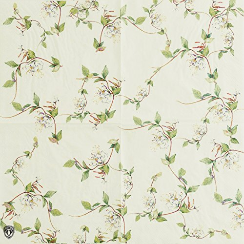 Retro Vine Paper Napkins, Alink Shabby Chic Spring Floral Design Tea Party Napkins, 20 Count 2-Ply