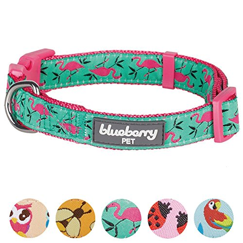 Blueberry Pet 7 Patterns Pink Flamingo on Light Emerald Dog Collar, X-Small, Neck 7.5