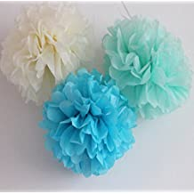 HEARTFEEL 6pcs Tissue Paper Pom poms Flower Ball Mixed Sizes Mint Green Turquoise CreamColors Wedding Party Outdoor Decoration Wedding Bridal Shower Home Decor (CB-7)