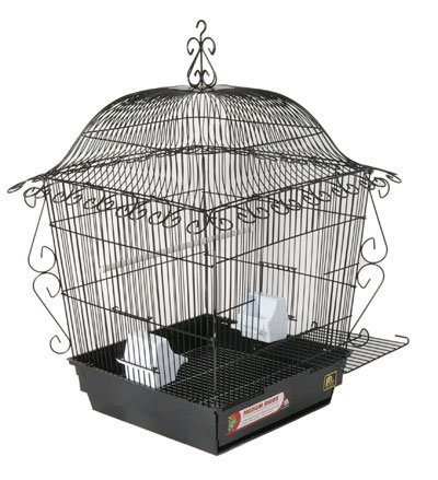 Scrollwork Cage (Prevue Pet Products Jumbo Scrollwork Bird Cage 220BLK Black, 18-Inch by 18-Inch by 25-Inch by Prevue Pet Products, Inc.)